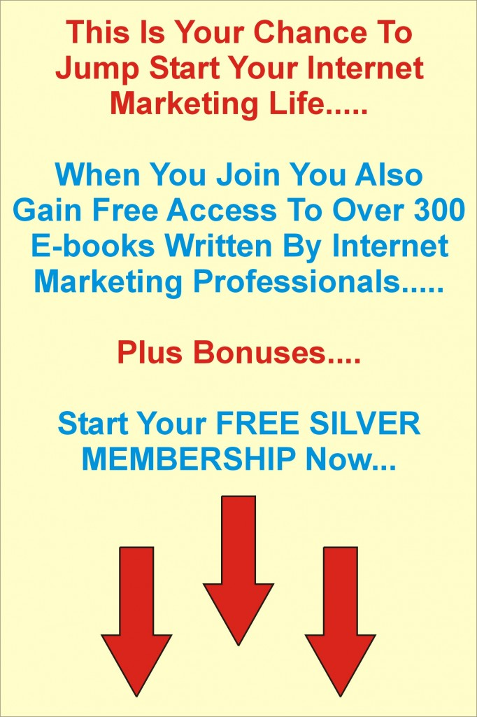 internet marketing assistance